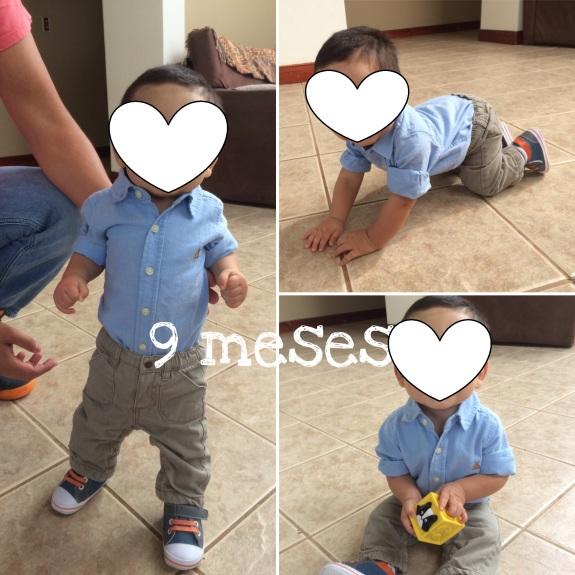 J 9 meses